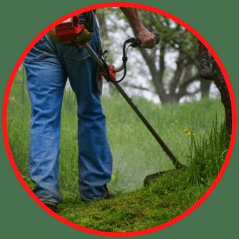 Limpeza e Paisagismo